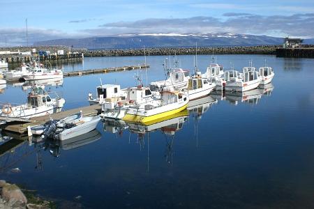 Foto vom Hafen in Bolungarvik